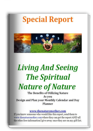 special report book cover